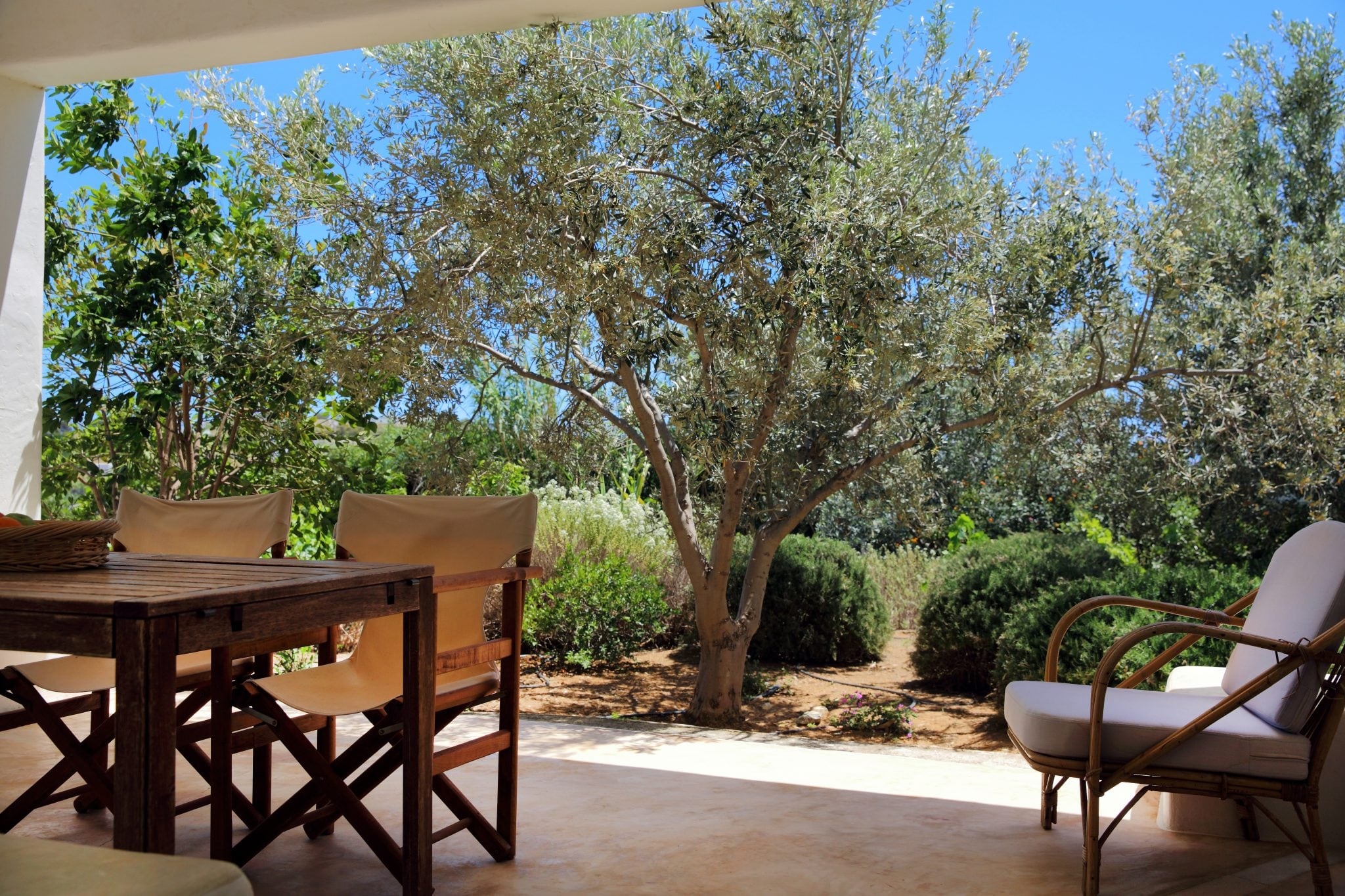 Paros  - House 3 Bedrooms - picture 3