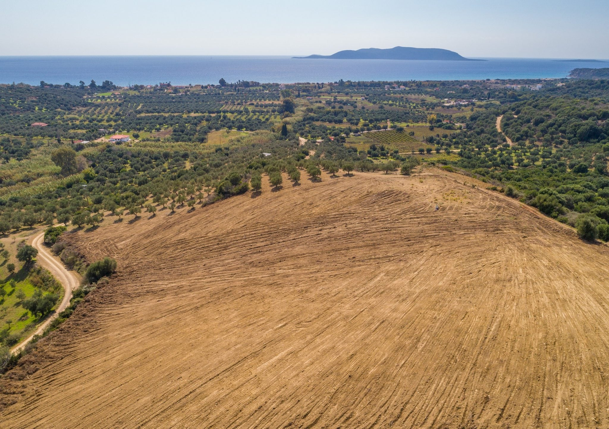 Messinia  - Plots  - picture 5