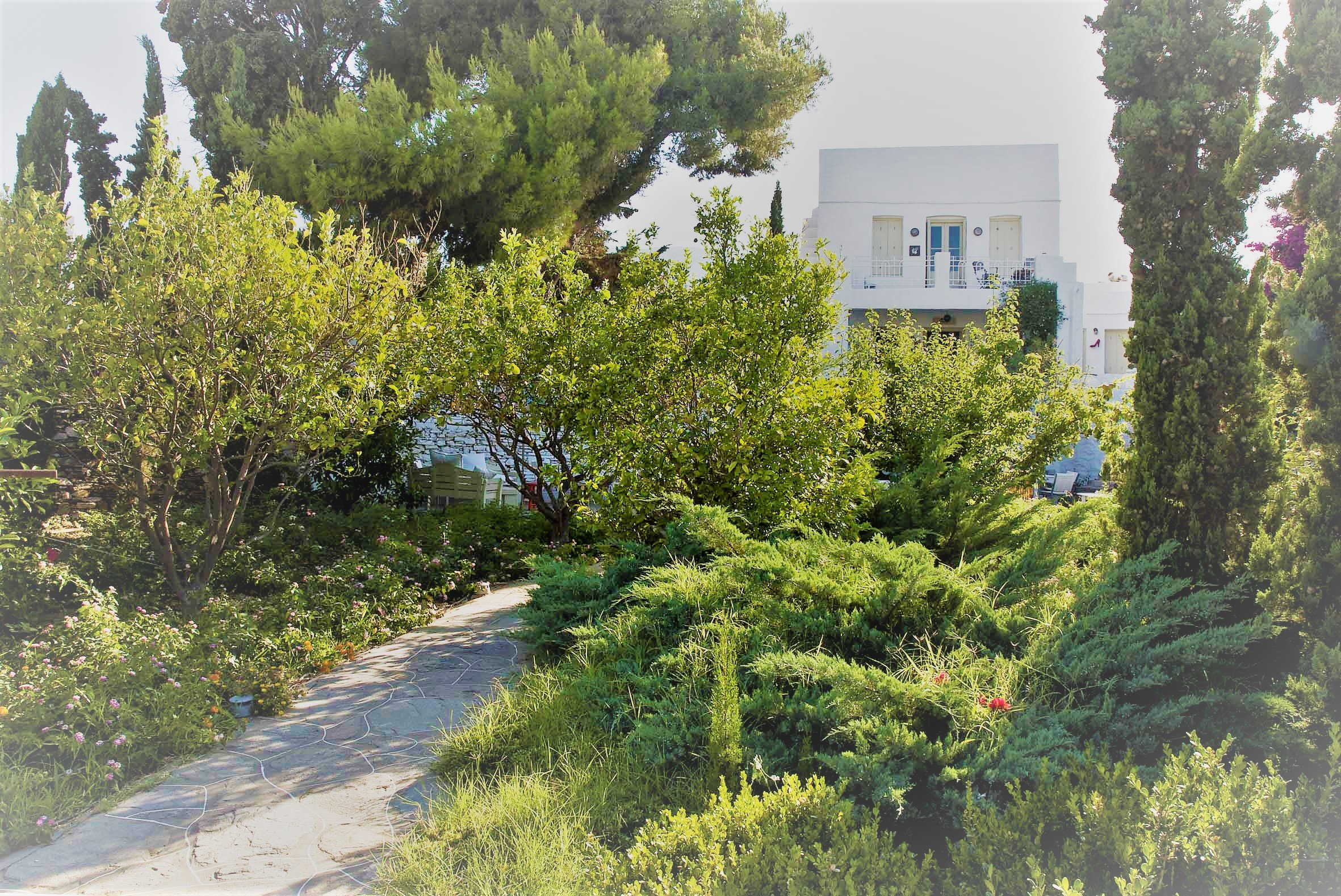 Building Sifnos  -  ref GR-6957-S (picture 1)