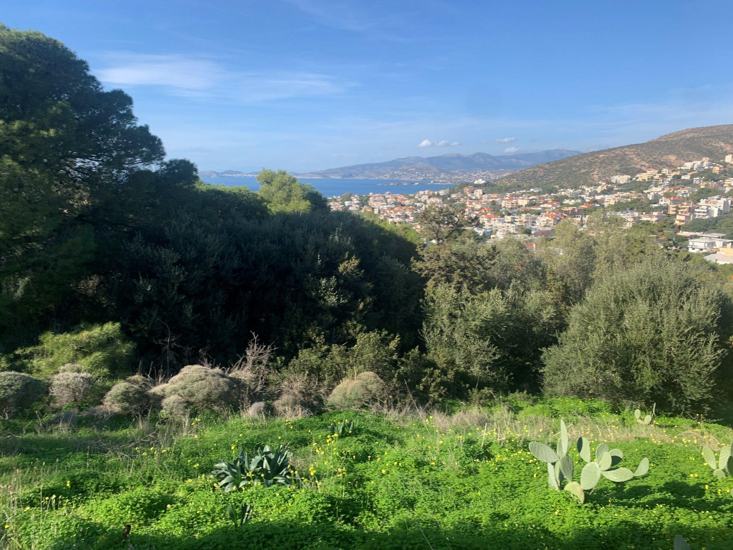 Plots Saronida  -  ref GR-7351-S (picture 2)