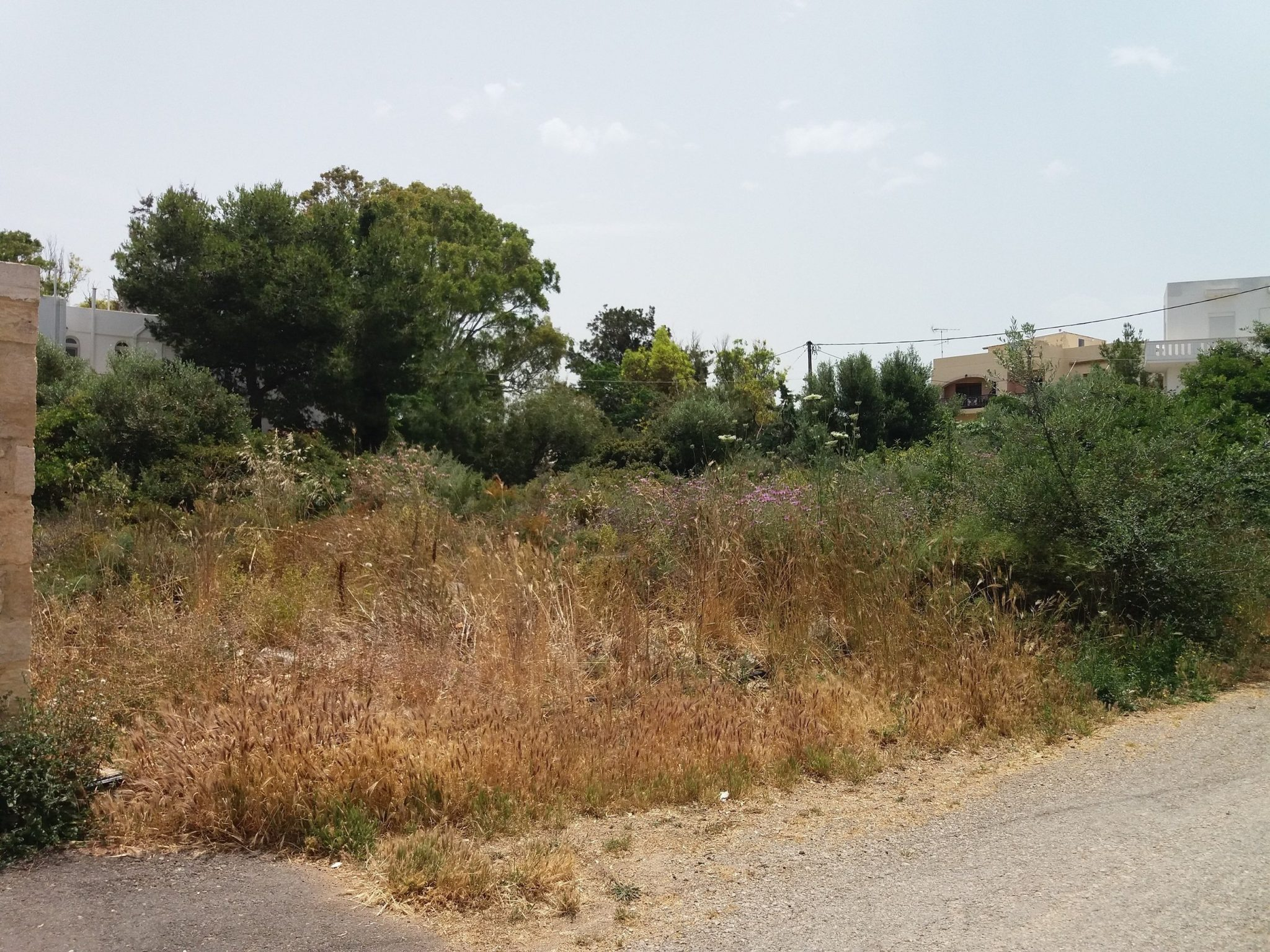 Plots Chania  -  ref GR-5142-S (picture 3)