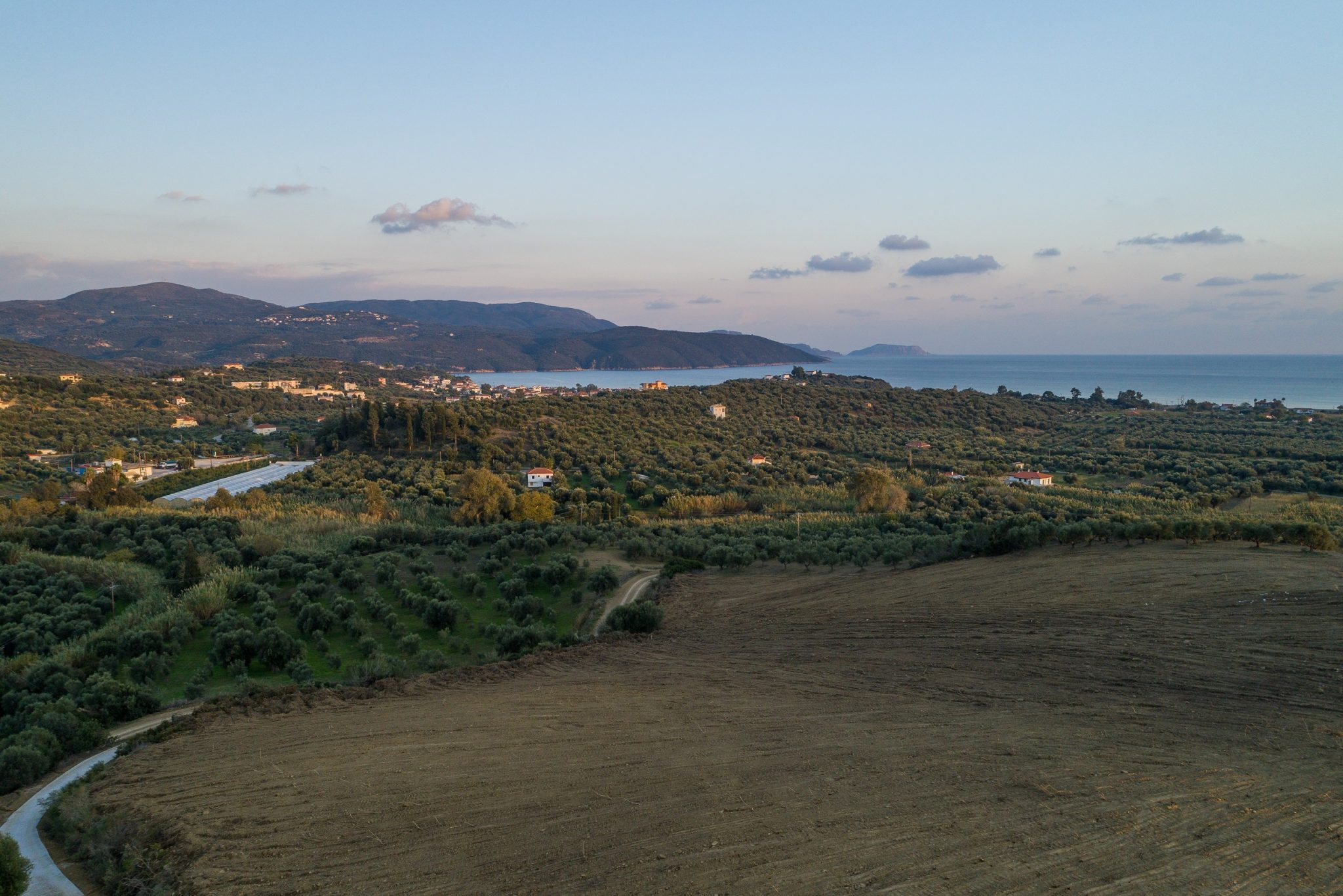 Messinia  - Plots  - picture 7