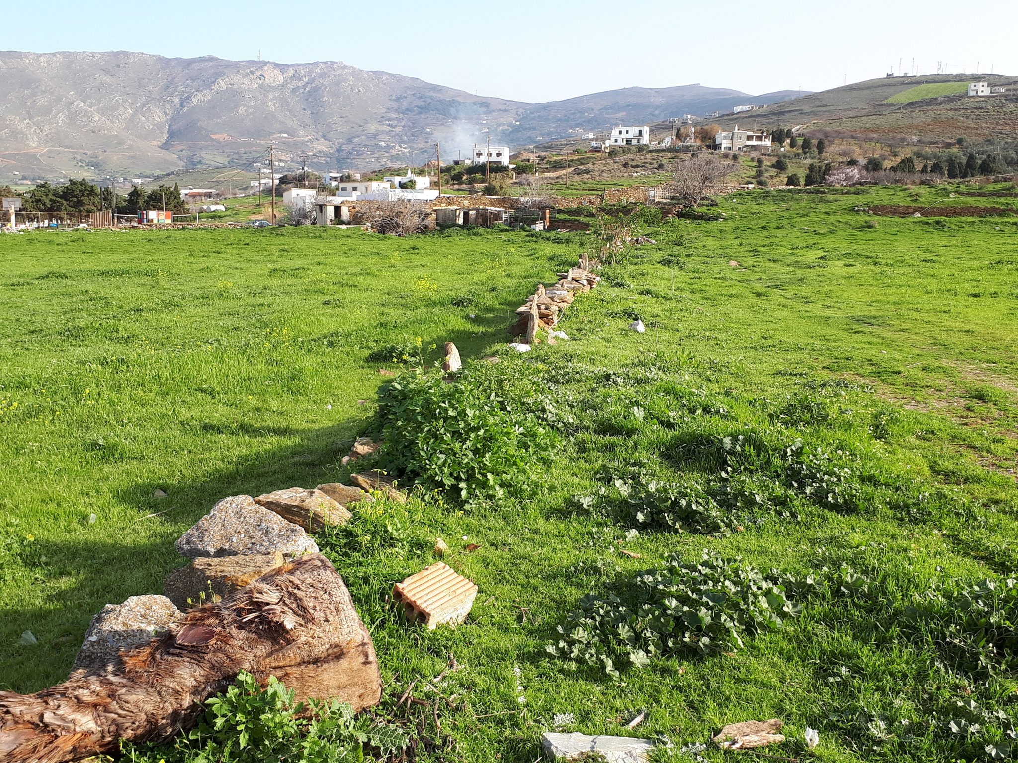 Terreno Andros  -  ref GR-4264-S (picture 2)