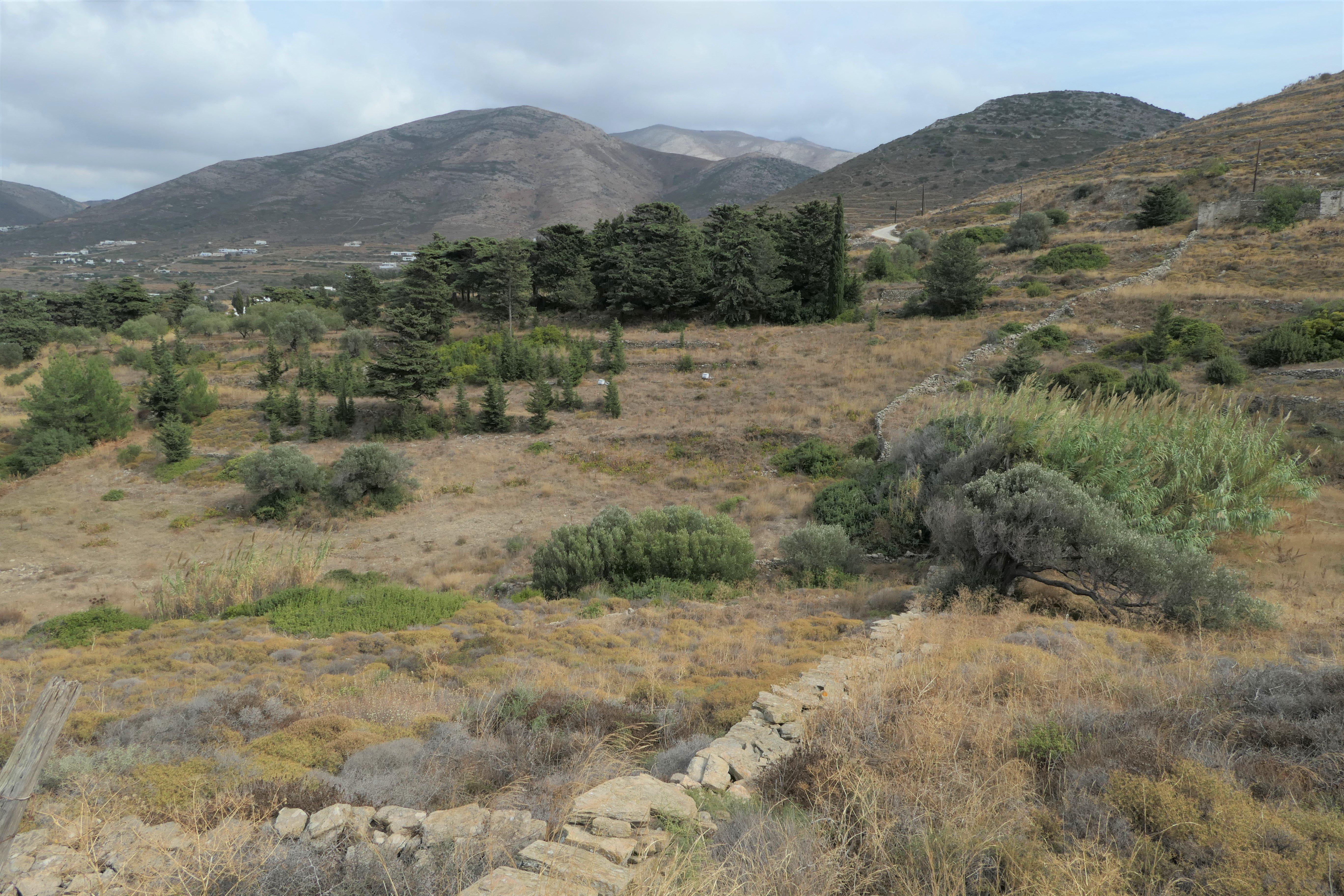 Paros  - Terreno  - picture 4