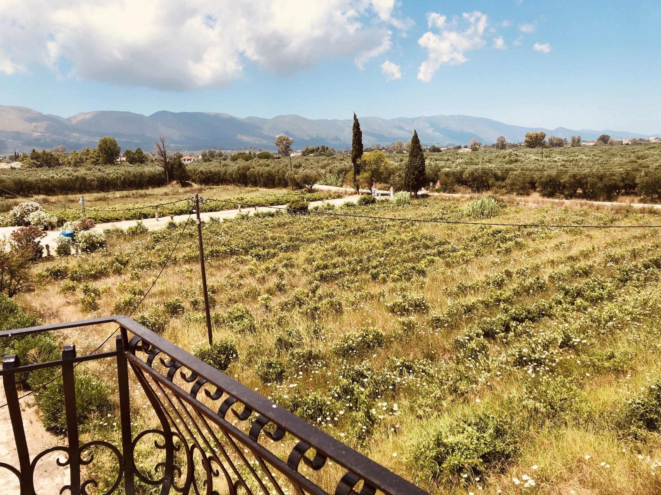 Zakynthos  - Terrain  - picture 12